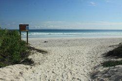 海龟湾海滩