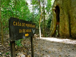 Cabo Blanco Absolute Natural Reserve