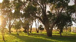 The Beautiful Park Big 4 Port Fairy Victoria