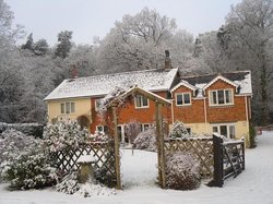 Forest Edge Bed & Breakfast