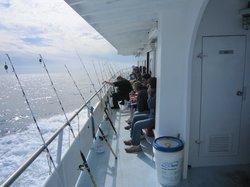 Dolphin Deep Sea Fishing
