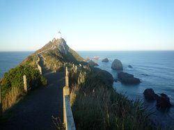 Nugget Point/Tokata Walks