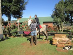 Kaapsehoop Horse Trails Day Trips