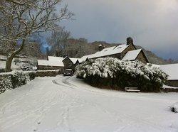 Gwynfryn Farm Cottages and B&B