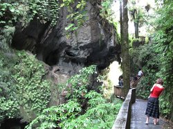 Mangapohue Natural Bridge Walk