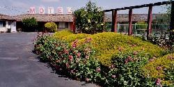 Wiebe Motel