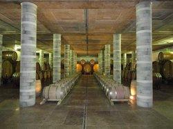Cortona Wine Tours