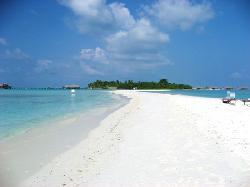 11.2007 Beach