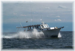 Stormy Petrel Charters