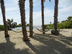 View toward lagoon and ocean