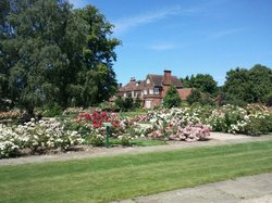 Royal National Rose Society Gardens