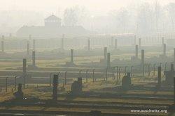 Auschwitz-Birkenau Eyalet Müzesi