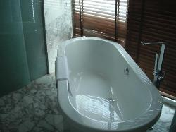 Separate bathtub