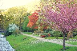 Arboretum Lichtentaler Allee