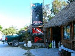 Dos Ojos Scuba Dive Shop