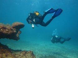Dive Academy Gran Canaria