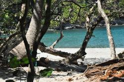 The beach in Manuel Antonio