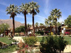 Palm Springs Koffi