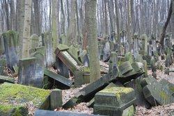 Jewish Cemetery (Cmentarz Zydowski)