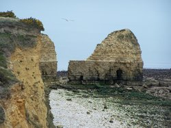 Experience Normandy Tours