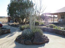 Chihuahuan Desert Nature Center & Botanical Garden
