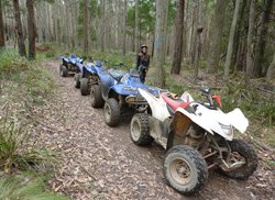 Victorian Quad Bike Tours