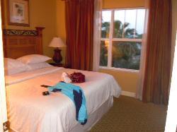 bedroom in unit 501
