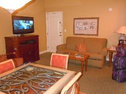 living room in unit 501