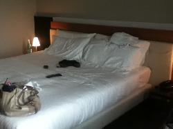 Cosmopolitan Business Hotel