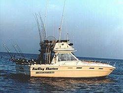 Sea King Charters