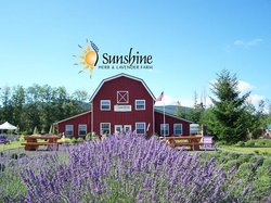 Sunshine Herb and Lavender Farm