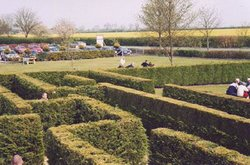 Wragby Maze