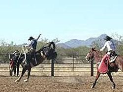 Cocoraque Ranch