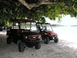 Cocos Island Tours