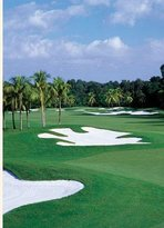 Doral Resort - Red Tiger Golf Course