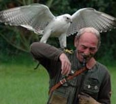 Falconcrest Roofvogelpark