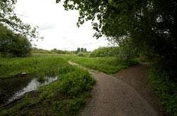 Winnall Moors Nature Reserve