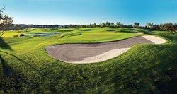 Innisbrook Golf Academy