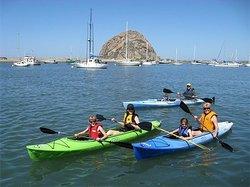Kayak Horizons Tours