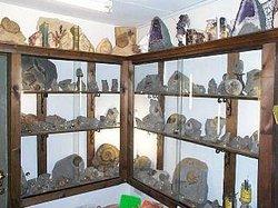 Lyme Regis Fossil Shop