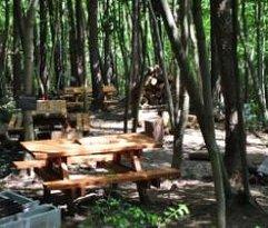 Hirata Tourist Farm