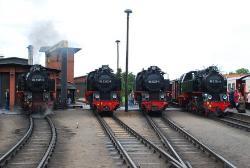 The Mollie Steam Train