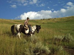 Canyon Adventures Horseback Day Tours