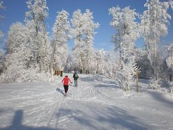 Bear Mountain Nordic Ski Trails