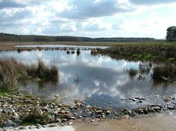 National Park Drents-Friese Wold