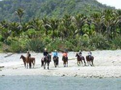 Punakaiki Horse Treks