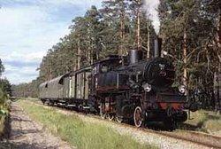 Bahnbetriebswerk Wolsztyn (Parowozownia Wolsztyn)