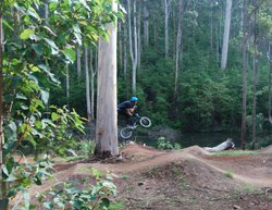 Pemberton Mountain Bike Park