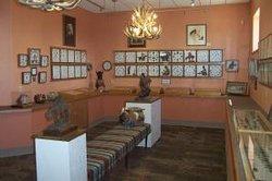 Petrified Wood Gallery