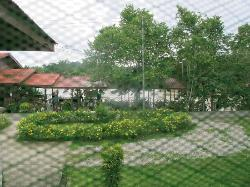 View from room on the main building